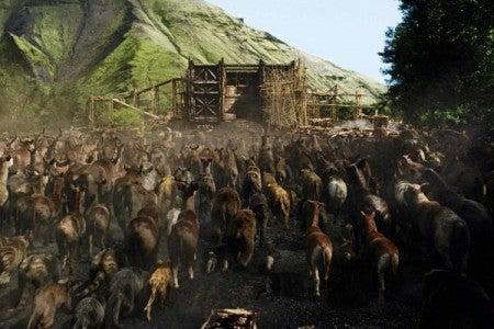 Estudio revela cuántos animales transportó el Arca de Noé
