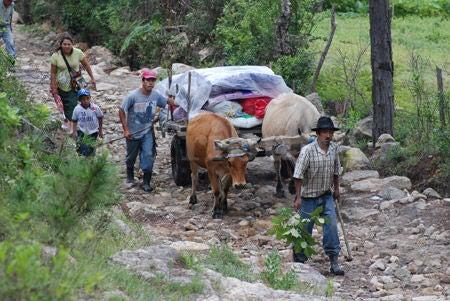 Honduras: Jóvenes mexicanos harán trabajo comunitario en Lepaterique