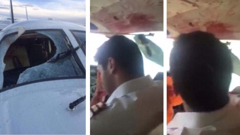 VIDEO: Así quedó el piloto del avión luego que la aeronave impactara con un pájaro