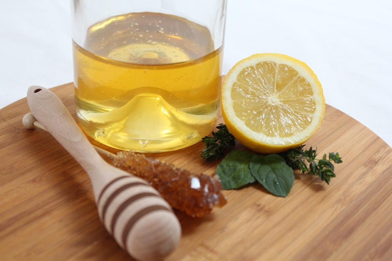 Propiedades y beneficios del té de eucalipto