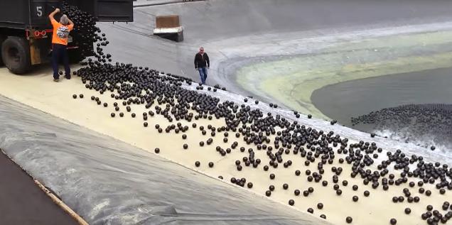 VIDEO: Los Ángeles lanza millones de pelotas en un embalse ante la peor sequía de su historia