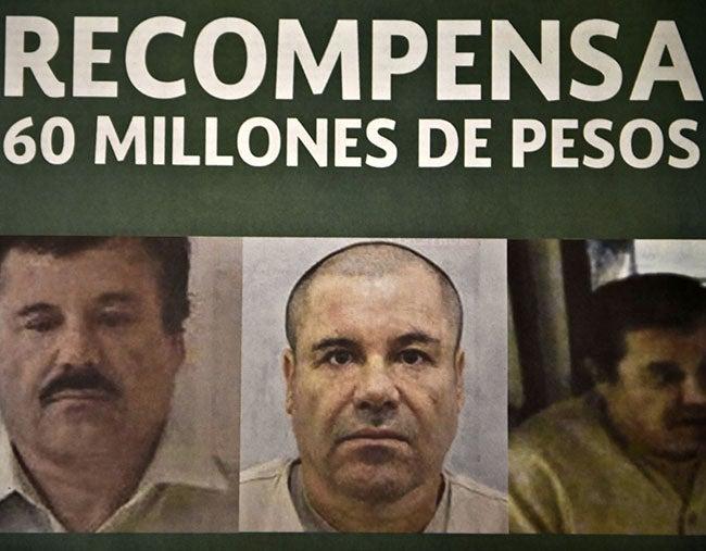 'El Chapo' Guzmán manejó negocios con las Farc en Panamá