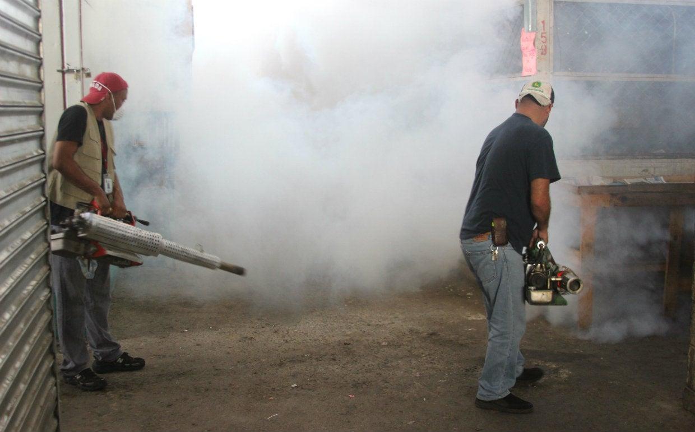 Alcaldía fumiga mercados sampedranos