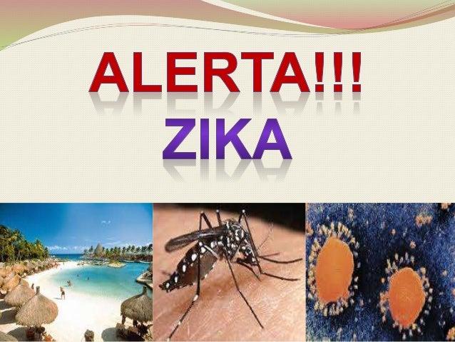 OMS decidirá el próximo lunes si el Zika es una emergencia sanitaria