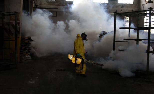 Guatemala fumiga contra mosquito transmisor de zika, dengue y chicungunya