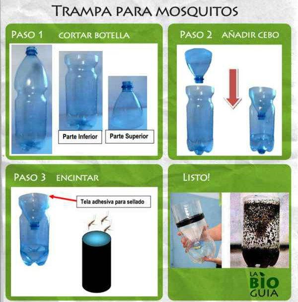 COPECO distribuirá trampas caceras para atrapar mosquito transmisor de zika