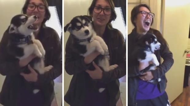 Este perro que no puede aullar es viral en Facebook