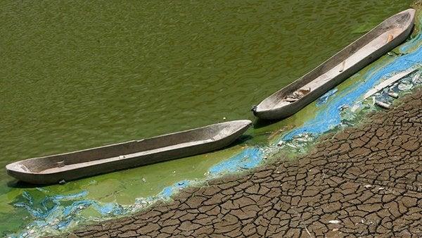 Todo un continente estará en riesgo de escasez de agua para 2050