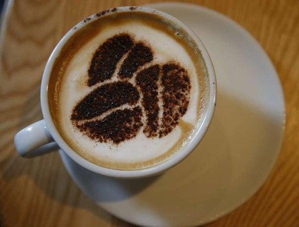 Consumo de café reduce a la mitad riesgo de sufrir cáncer colorrectal