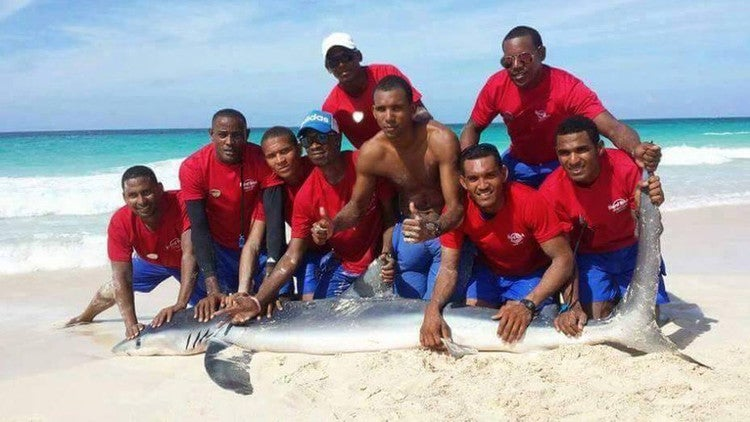 Arrastran a tiburón a la playa para tomarse fotos con él y lo matan