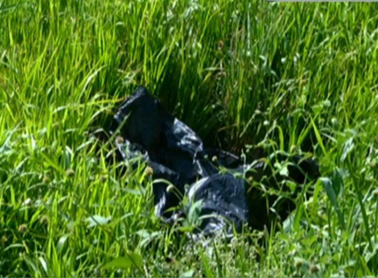 Hallan cadáver de fémina en crique en La Lima, Cortés