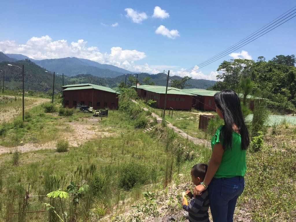 3-Muchos niños están trabajando en actividades agrícolas luego que los centros educativos que financiaba la empresa fueron cancelados