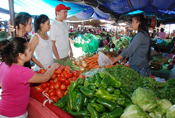 Feria del agricultor en Tegucigalpa: Libra de papa baja dos lempiras