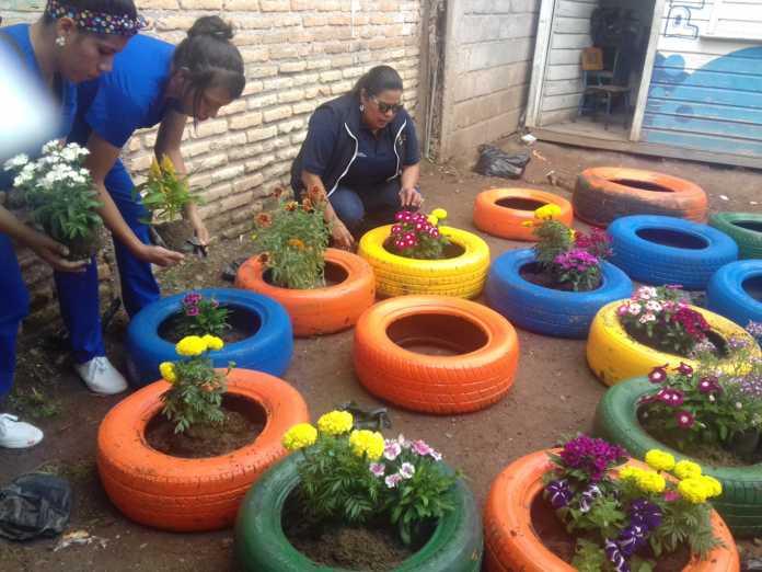 Contra zancudo escolares jardineras llantas viejas