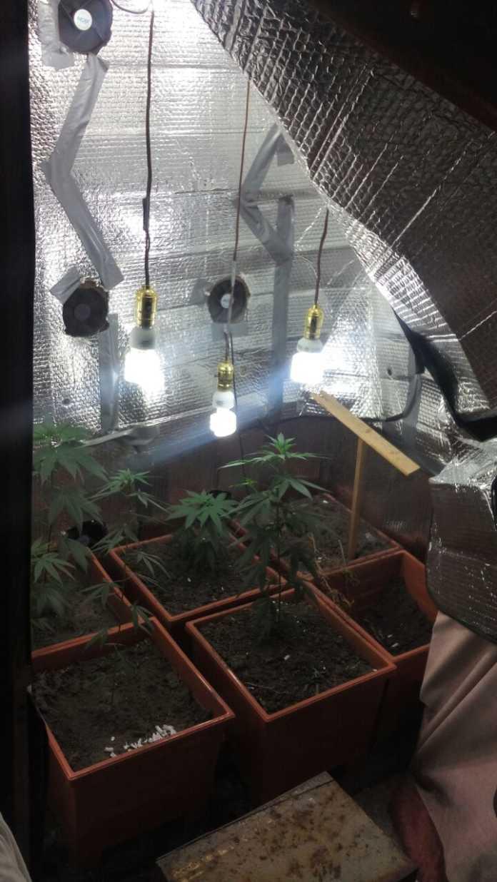 narcolaboratorio y nueva droga en Tegucigalpa