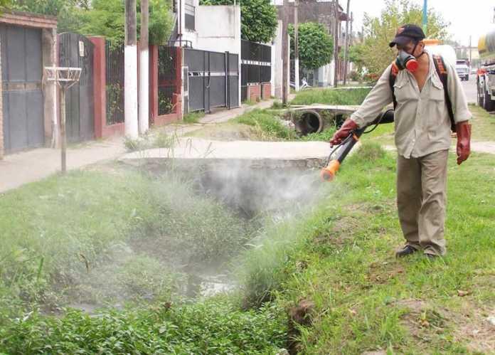 Combate al Aedes