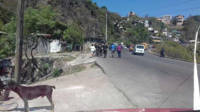 Las Pavas