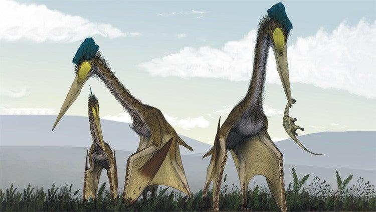 Hallan fósil de monstruo prehistórico que comía dinosaurios