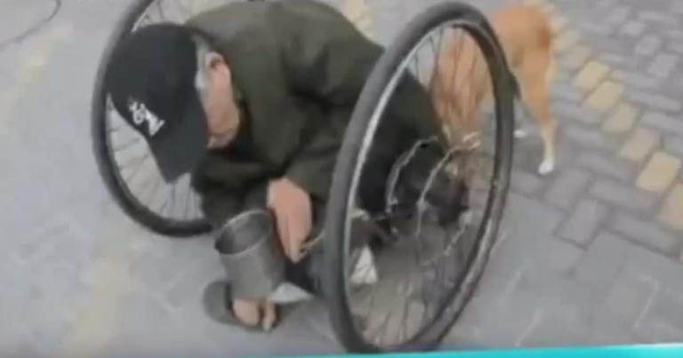 VIRAL: Hombre paralítico es ayudado por su cachorro