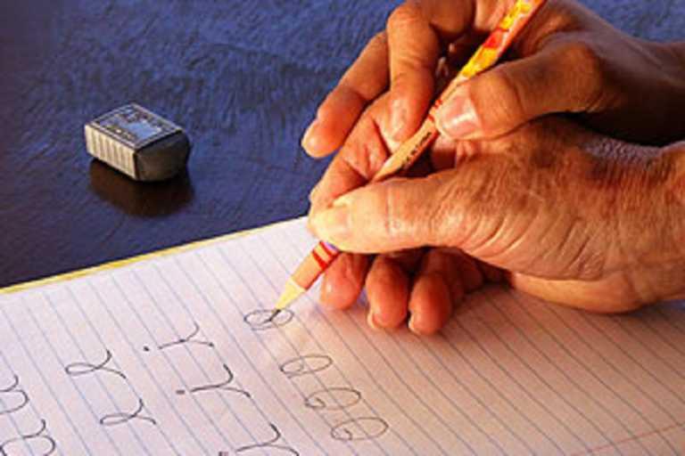 UPNFM: No hubo diagnóstico previo para modelo de alfabetización