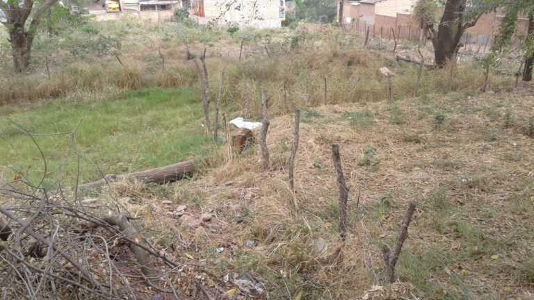 Una mujer es encontrada sin vida en la colonia Kennedy de Tegucigalpa