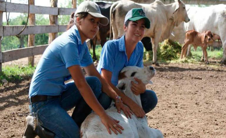 UNAG: Lenta construcción de hospital veterinario mantiene cerrada carrera de medicina veterinaria