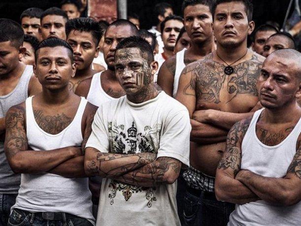 Redadas masivas: Detienen a 1,400 pandilleros en los Estados Unidos