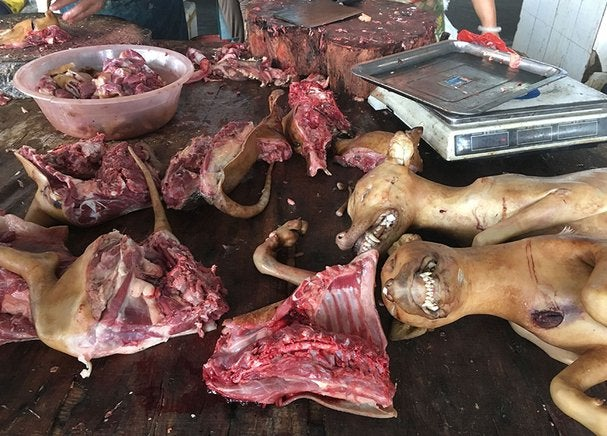 La fiesta de la carne de perro