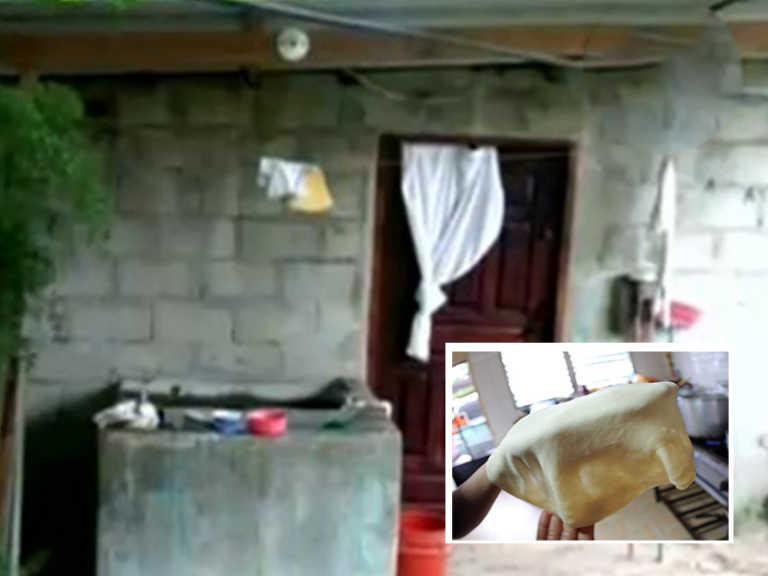 Choloma: Tres hermanitos se intoxican tras comer baleadas; capturan mamá