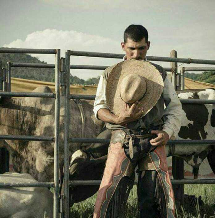 Vaquero en Ocotepeque