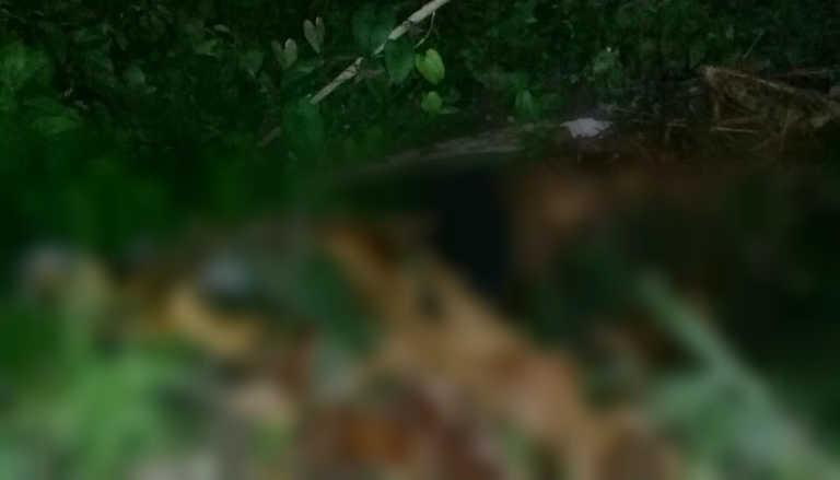 Matan a un muchacho en la Colonia La Libertad, La Ceiba