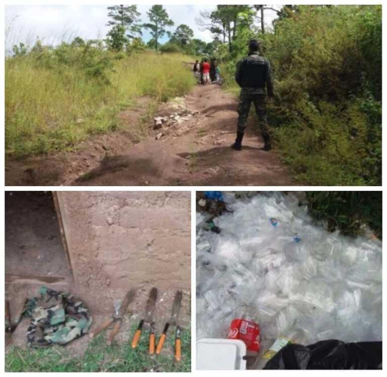 Incautan presunta fábrica de droga en zona montañosa de Santa Lucía