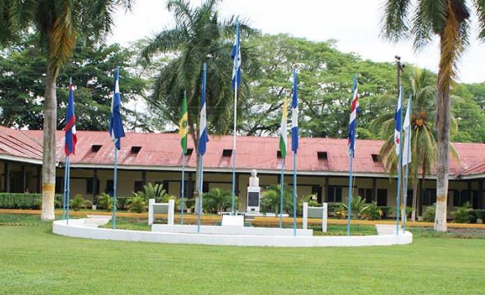 Las autoridades de la Universidad Nacional de Agricultura (UNA) reportaron que más de 200 estudiantes resultaron intoxicados con alimentos.