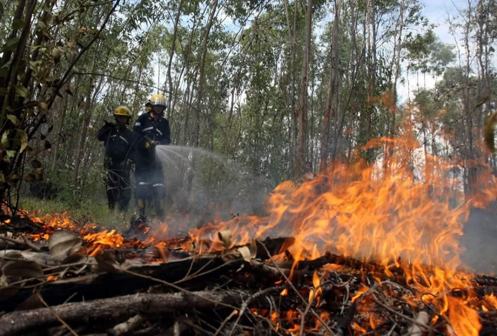 incendios registrados en el 2017 en Honduras