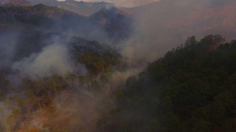 Voraz incendio en el Hatillo no ha sido controlado y sigue arrasando