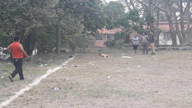 SPS: Ejecutados aparecen dos hombres en la colonia Primavera