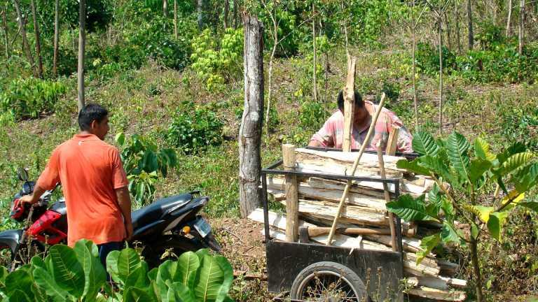 DIMA lucha contra leñadores y pirómanos en la Reserva de El Merendón