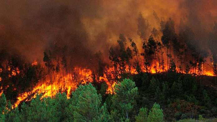 Incendios forestales en Honduras