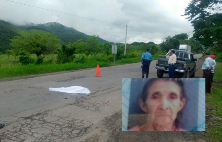 Abuela de 86 años muere al ser embestida por un pick-up en Copán