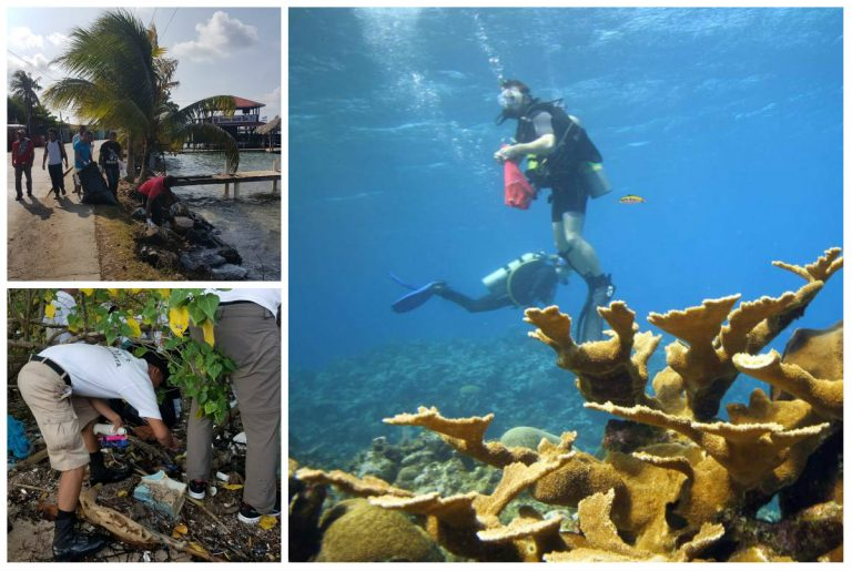 Desechos de Guatemala siguen afectando a Honduras; inicia limpieza de arrecifes