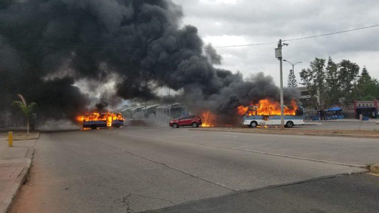 Manifestantes queman tres buses «rapiditos» en las afueras de la UNAH