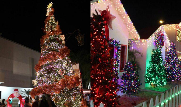 SPS: inauguran la temporada navideña en el Bazar del Sábado