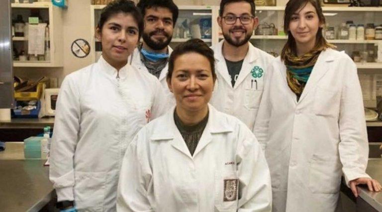 Científica mexicana eliminó el 100 % del Virus del Papiloma Humano (VPH) con una técnica no invasiva