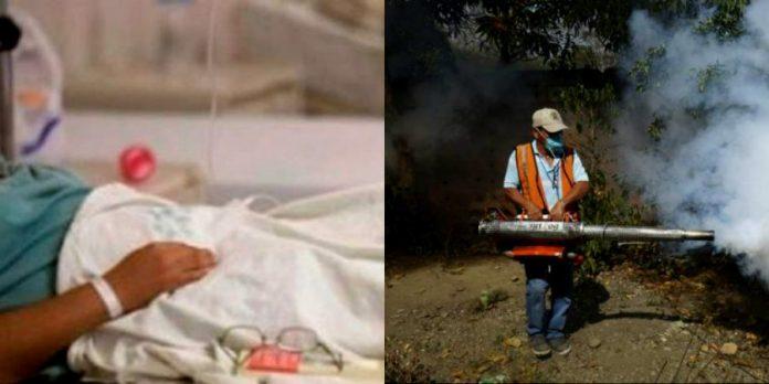 muertos por dengue en la zona norte
