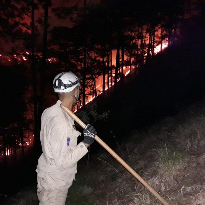 cifra de Incendios forestales