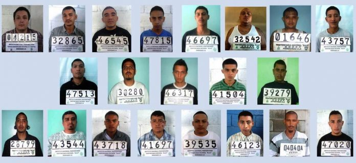 Criminólogo sobre 22 pandilleros absueltos: