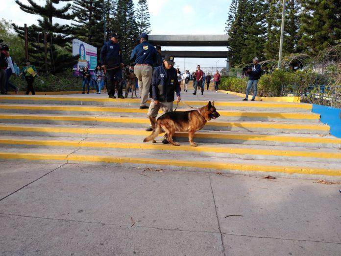 operativos caninos en UNAH