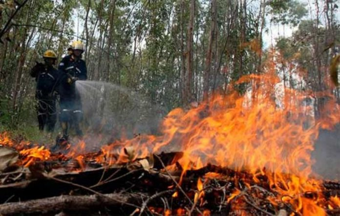 estado de emergencia ambiental