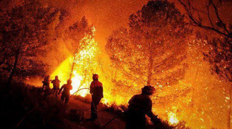 Aumentan los incendios forestales; suman 807 en cinco meses de 2019