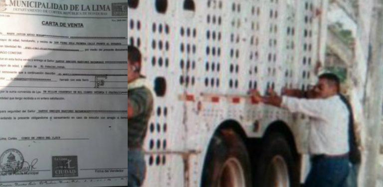 Al descubierto: venden novillos de Lima Corral a copaneco en millonaria y oscura transacción
